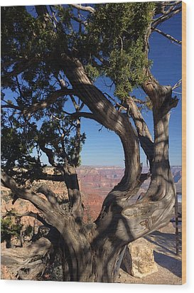 Grand Canyon No. 6 Wood Print by Sandy Taylor