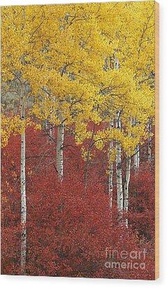 Grand Teton Viii Wood Print by John Blumenkamp