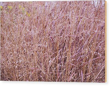 Grasses On The High Line No. 1 Wood Print by Sandy Taylor