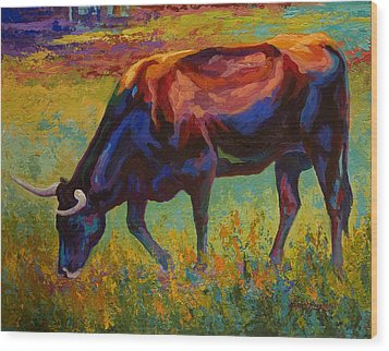 Grazing Texas Longhorn Wood Print by Marion Rose