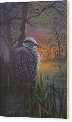 Great Blue At Sunset Wood Print by Colleen Birch