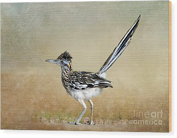 Greater Roadrunner 2 Wood Print by Betty LaRue