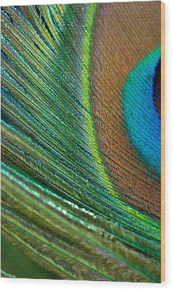 Half Cocked Wood Print by Lisa Knechtel