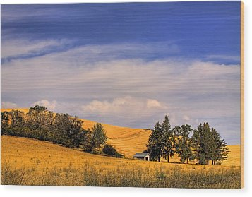 Harvested Wood Print by David Patterson