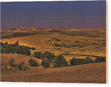 Harvested Fields Wood Print by David Patterson