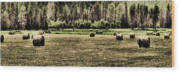 Hay Harvest Wood Print by David Patterson
