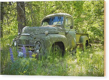 Hiding Wood Print by Idaho Scenic Images Linda Lantzy