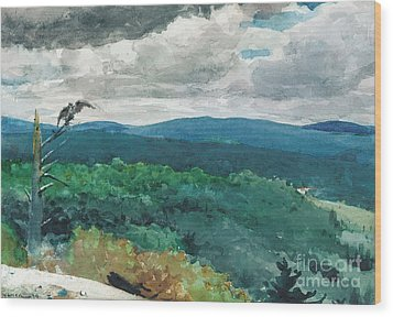 Hilly Landscape Wood Print by Winslow Homer