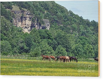 Horses On The Rubideaux Wood Print by Marty Koch