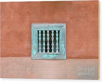House Of Zuni Wood Print by David Lee Thompson