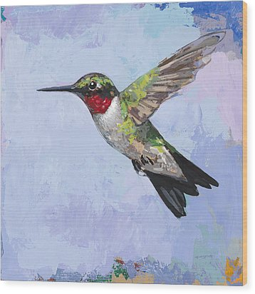 Hummingbird #3 Wood Print by David Palmer