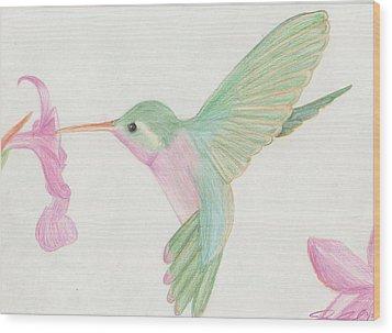 Hummingbird Wood Print by Joanna Aud