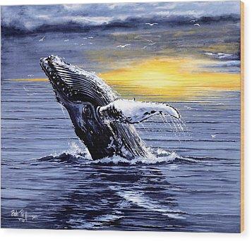 Humpback Whale Breaching Wood Print by Bob Patterson