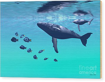 Humpback Whales Wood Print by Corey Ford