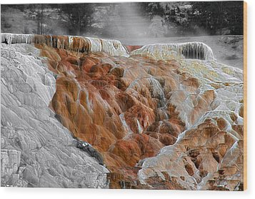 Hymen Terrace Mammoth Hot Springs Yellowstone Park Wy Wood Print by Christine Till