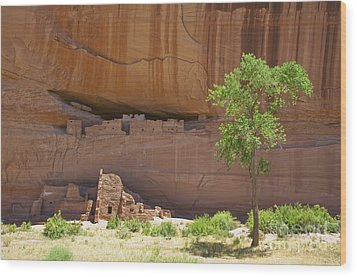 Indian Cliff Dwellings Wood Print by Thom Gourley/Flatbread Images, LLC
