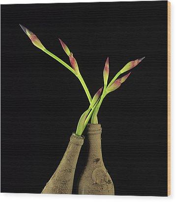 Iris Wood Print by Bernard Jaubert