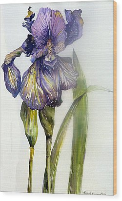 Iris In Bloom Wood Print by Mindy Newman
