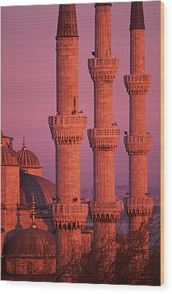 Istanbul, Turkey, Blue Mosque Wood Print by Grant Faint