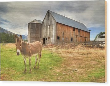 Just Another Day On The Farm Wood Print by Donna Kennedy