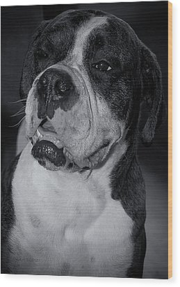 Just Handsome II Wood Print by DigiArt Diaries by Vicky B Fuller