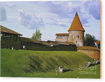 Kaunas Castle Wood Print by Arvydas Kantautas