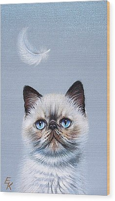 Kitten And Feather  Wood Print by Elena Kolotusha