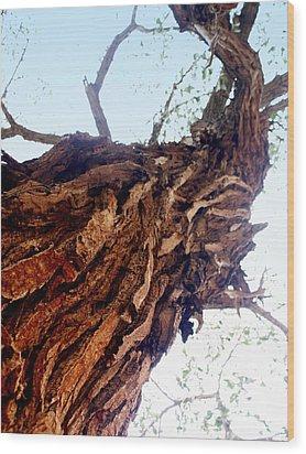 knarly Tree Wood Print by Marty Koch