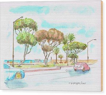 Laguna Beach Waterfront - California Wood Print by Carlos G Groppa