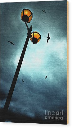 Lamps With Birds Wood Print by Meirion Matthias