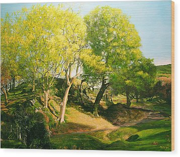 Landscape With Trees In Wales Wood Print by Harry Robertson