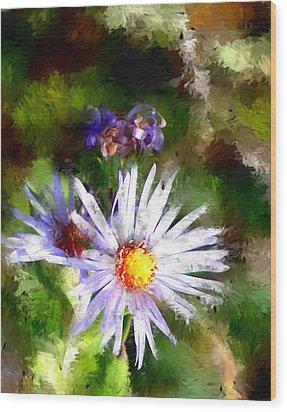 Last Rose Of Summer Wood Print by David Lane