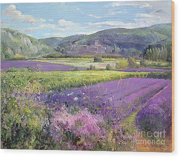 Lavender Fields In Old Provence Wood Print by Timothy Easton