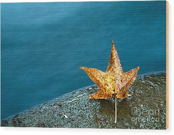 Leaf Wood Print by Chris Mason