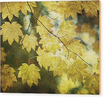 Leaf Zen T Wood Print by Rebecca Cozart