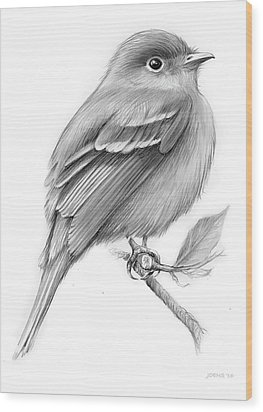 Least Flycatcher Wood Print by Greg Joens