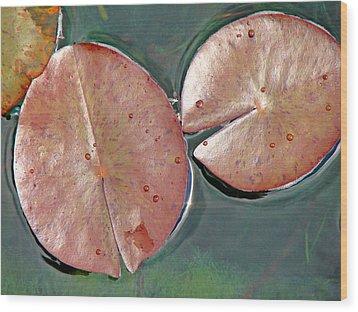 Lily Pads 1 Wood Print by Diana Douglass