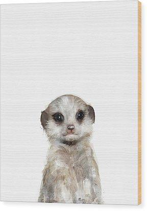 Little Meerkat Wood Print by Amy Hamilton