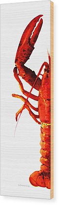 Lobster - The Left Side Wood Print by Sharon Cummings