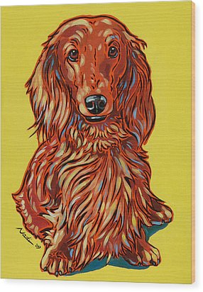Long Haired Dachshund Wood Print by Nadi Spencer