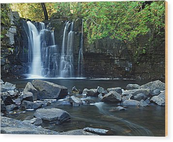 Lower Johnson Falls Wood Print by Larry Ricker