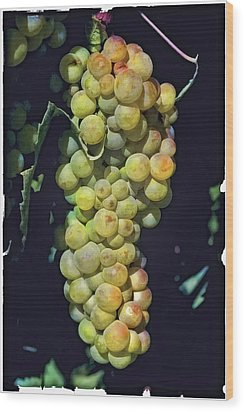 Luscious Chardonnay Wood Print by Lynn Andrews