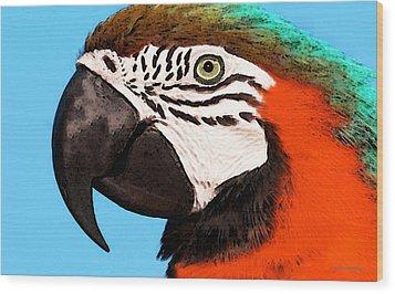 Macaw Bird - Rain Forest Royalty Wood Print by Sharon Cummings