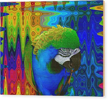 Macaw Madess Wood Print by Amanda Vouglas