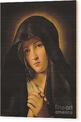 Madonna Wood Print by Il Sassoferrato