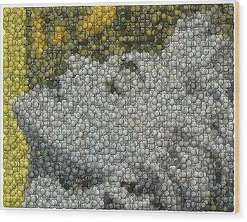 Madonna True Blue Material Girl Coins Mosaic Wood Print by Paul Van Scott