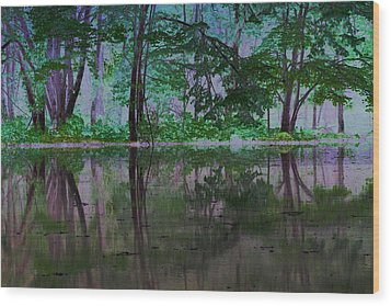 Magical Forest Wood Print by Karol Livote