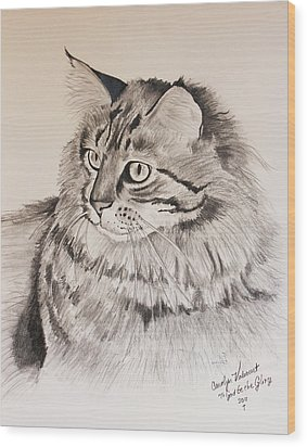 Maine Coon Cat Dusty Wood Print by Carolyn Valcourt