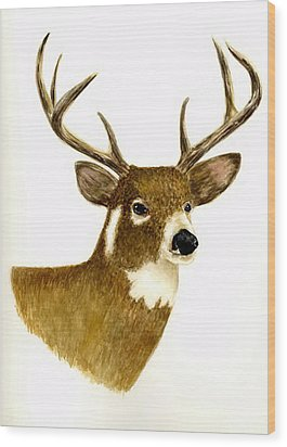 Male Deer Wood Print by Michael Vigliotti