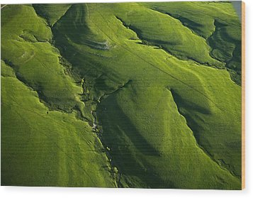 Meandering Valleys Of Texaco Hill Wood Print by Jim Richardson